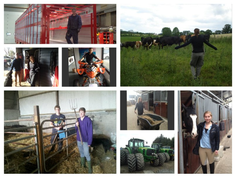 collage agri 2